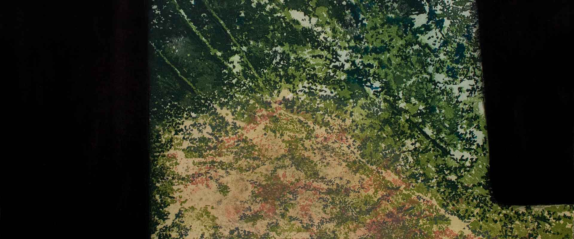 Glade detail of etching and carborundum print by Stephen Vaughan