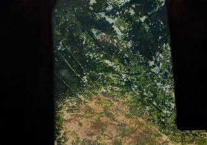 Glade intaglio etching carborundum print thumb stephen vaughan
